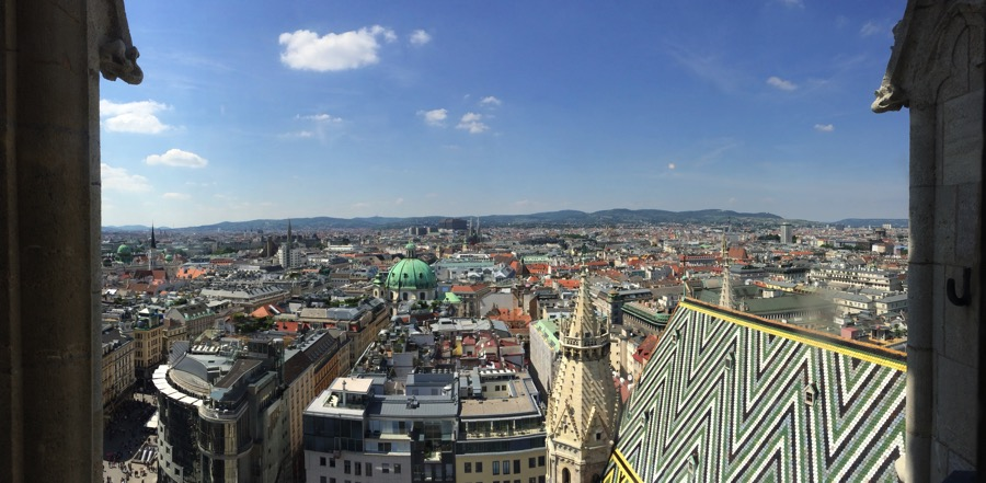 View from the south tower of St. Stephen's Cathedral