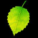 Shade App Icon